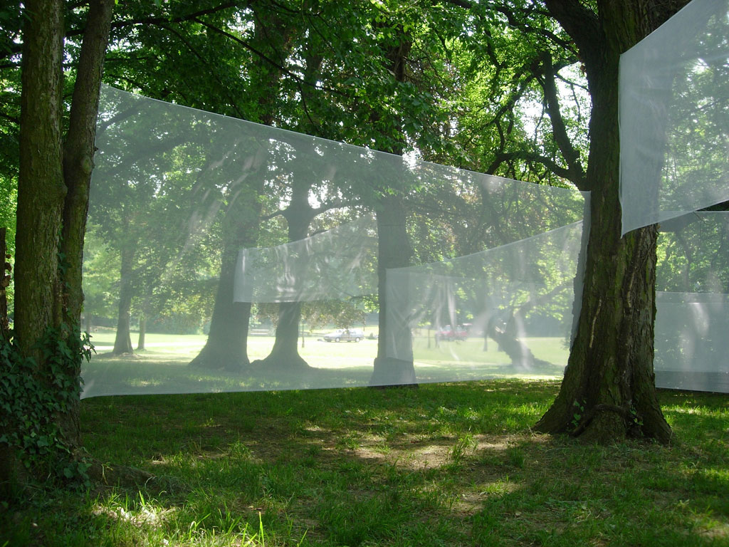 Transparence laiteuse / Milky Transparency
